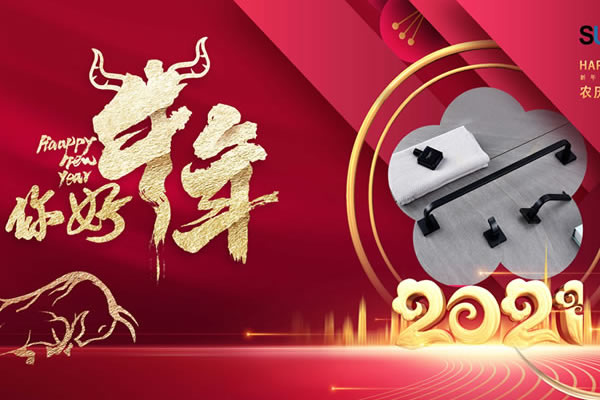 Happy Chinese Spring Festival for 2021